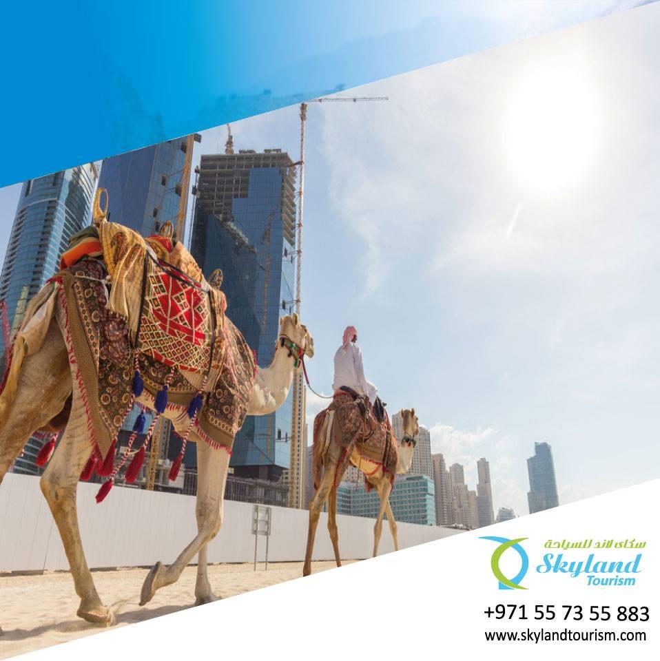 Best Dubai desert safari Tour Company at Reasonable Price - 3