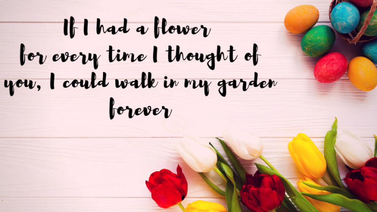 Love Quotes for Him and Her-If I had a flower for every time I thought of you