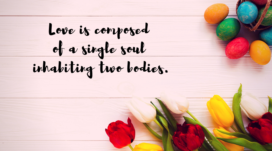 Love Quotes for Him and Her-Love is composed of a single soul inhabiting two bodies.