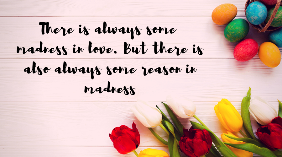 Love Quotes for Him and Her-There is always some madness in love. But there is also always some reason in madness