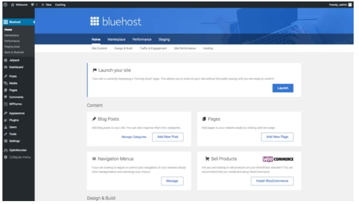 HOW TO START A BLOG TO MAKE MONEY ONLINE - BLUEHOST-12