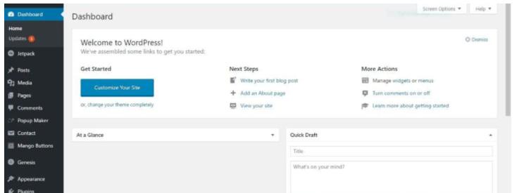 HOW TO START A BLOG TO MAKE MONEY ONLINE - Setting up wordpress blog
